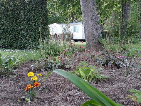 Camping  Des Peupliers - Camping Pas-de-Calais - Image N°6