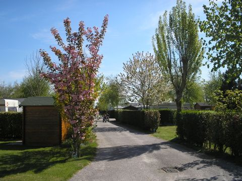 Camping Le Champ Neuf - Camping Somme - Image N°11