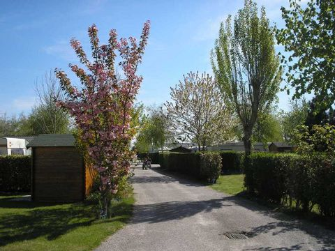 Camping Le Bout Des Crocs - Camping Somme - Image N°3