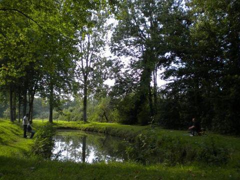 Camping De La Route Fleurie - Camping Pas-de-Calais - Image N°6