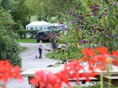 Camping Les Cytises - Camping Pas-de-Calais - Image N°2
