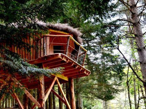 Cabanes et Yourtes de la Vallée de Lance - Camping Puy-de-Dome - Image N°2