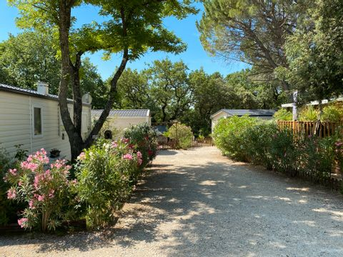 Camping La Vallée De Barry - Camping Vaucluse - Image N°5
