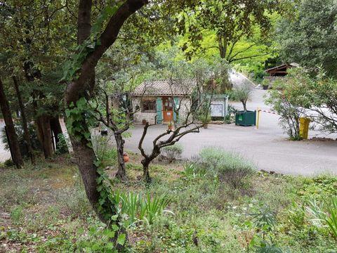 Camping La Vallée De Barry - Camping Vaucluse - Image N°7