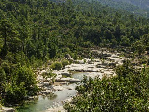 Domaine Acqua e Sole - Camping Corse - Image N°2