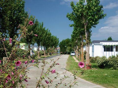 Camping Le Petit Beauregard - Camping Vendée - Image N°2