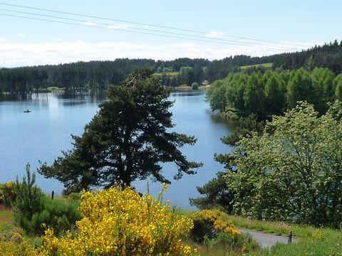 Chalets du Lac de Ganivet - Camping Lozere - Image N°3
