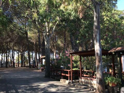 Catanzaro  Villaggio Camping Lungomare - Camping Catanzaro - Afbeelding N°12