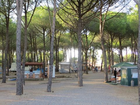 Catanzaro  Villaggio Camping Lungomare - Camping Catanzaro - Afbeelding N°13