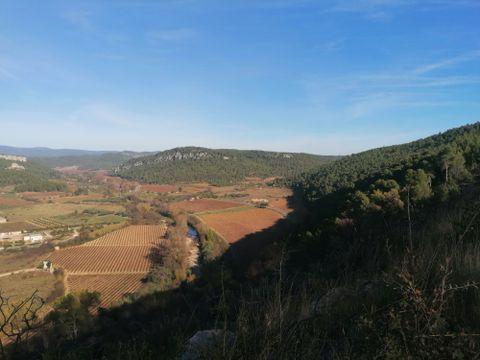 Camping de l'Olivigne - Camping Aude - Image N°11