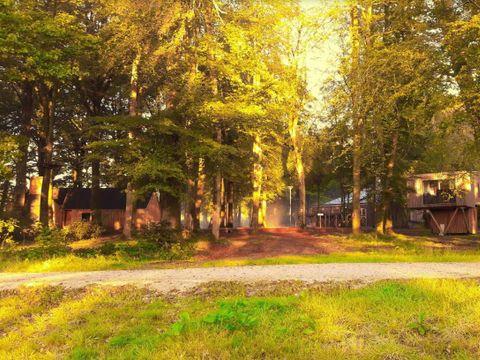 Camping L'Etape en Forêt - Camping Calvados - Image N°6