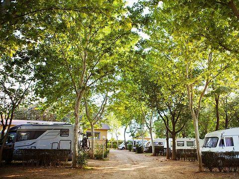 Camping Cordoba - Camping Cordoue - Image N°30