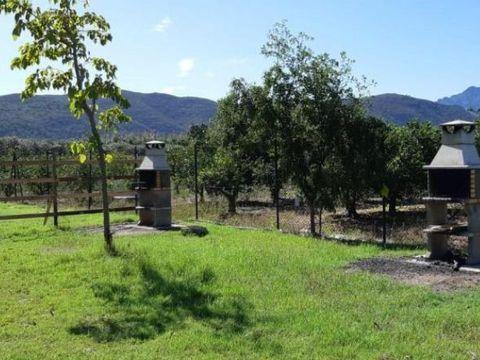 Camping La Naranja - Camping Valence - Image N°4