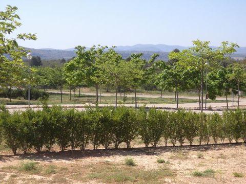 Camping Maestrat Park - Camping Valence - Image N°13