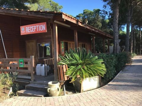 Campo dei Fiori Camping & Bungalows - Camping Livourne - Image N°19