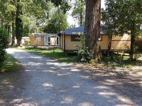 Camping Bois et Toilés - Camping Drome - Image N°16