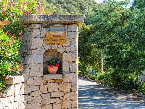 Résidence les Hauts de l'Avena - Camping Corse - Image N°2