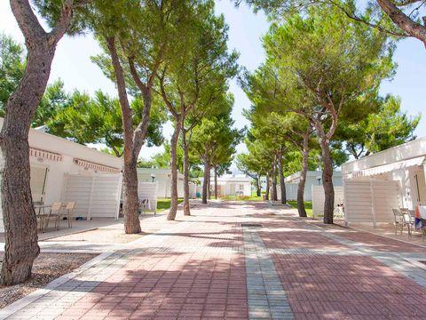 Camping Villaggio Baia Del Monaco - Camping Foggia - Image N°11