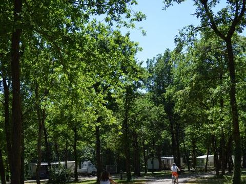 Camping Lilipin - Camping Vienne - Image N°5