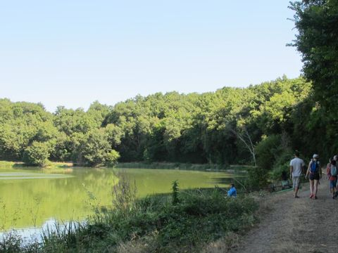Camping Lilipin - Camping Vienne - Image N°14