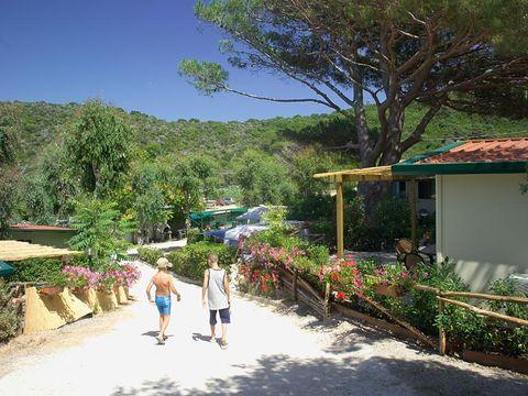 Camping Villaggio Acquaviva - Camping Livourne - Image N°5