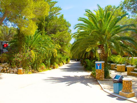 Camping Park Playa Bara - Camping Tarragone - Image N°14