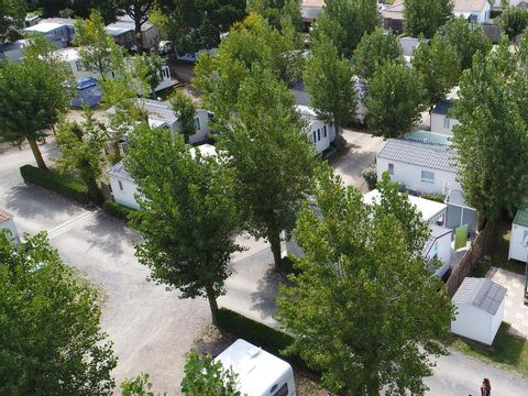 Camping Oyat - Camping Paradis - Camping Vendée - Image N°21
