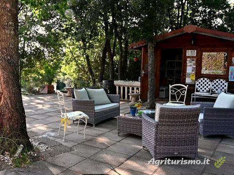 Agriturismo Serraiola Alta - Camping Grosseto - Image N°10