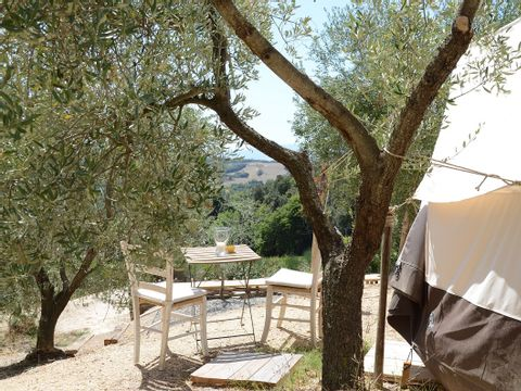 Camping The Lazy Olive Glamping - Camping Pise - Image N°15