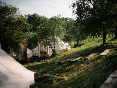 Camping The Lazy Olive Glamping - Camping Pise - Image N°5