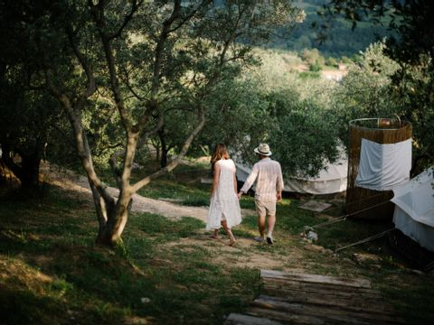 Camping The Lazy Olive Glamping - Camping Pise - Image N°6