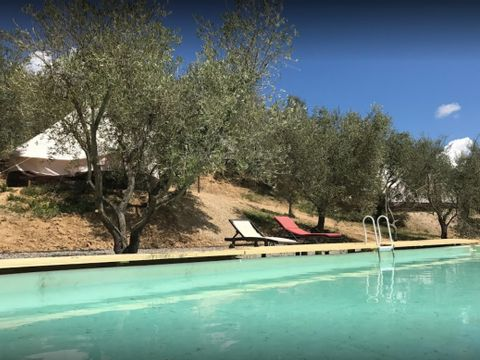 Camping The Lazy Olive Glamping - Camping Pise - Image N°2