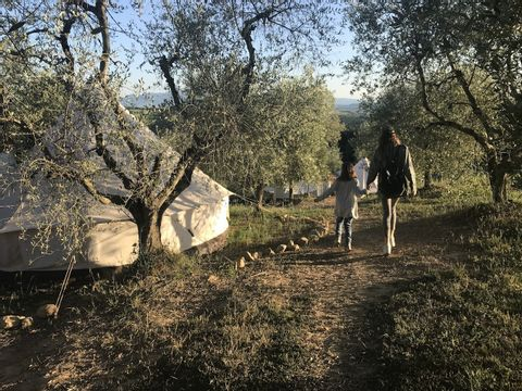 Camping The Lazy Olive Glamping - Camping Pisa - Image N°9