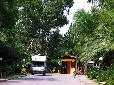 Camping Pineta di Sibari  - Camping Cosenza - Image N°5