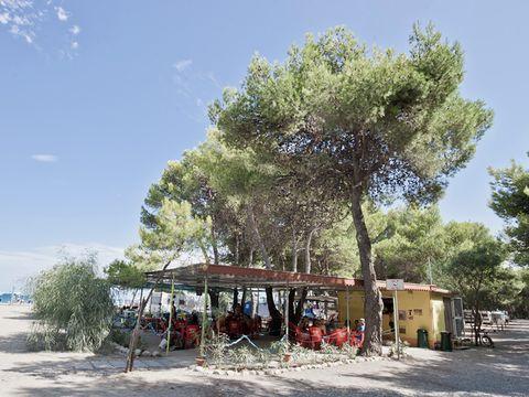 Camping Pineta di Sibari  - Camping Cosenza - Image N°4