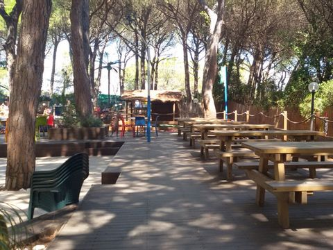 Camping Village Il Sole - Camping Grosseto - Image N°8