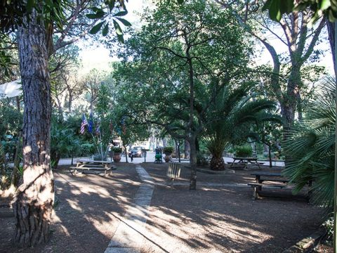 Camping Village Il Sole - Camping Grosseto - Image N°14