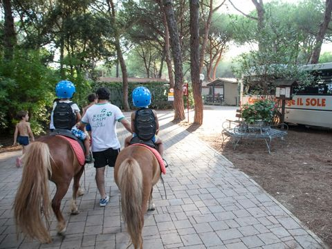 Camping Village Il Sole - Camping Grosseto - Image N°11