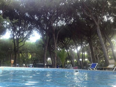 Camping Village Il Sole - Camping Grosseto - Image N°3