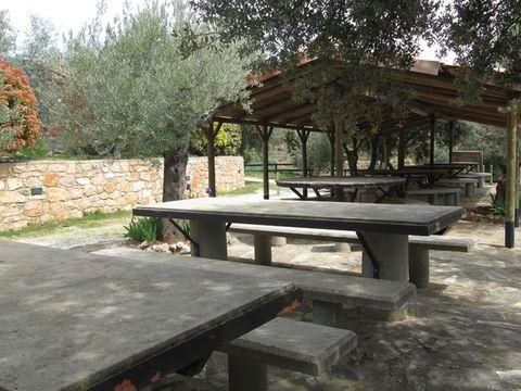 CAMPING ALQUEZAR - Camping Huesca - Image N°6
