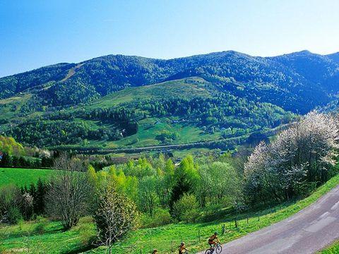 Residence Bussang Massif des Vosges - Camping Vosges - Image N°9