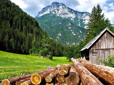 Residence Les Menuires - Camping Savoie - Image N°6