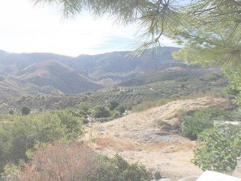 Camping El Cantonet - Camping Jaén - Image N°4