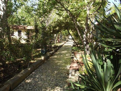 Sos Flores Camping Village - Camping Cerdeña - Image N°9