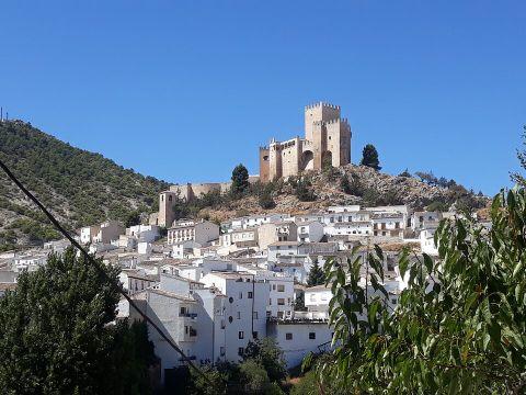 Camping El Pinar Del Rey - Camping Almería - Image N°8