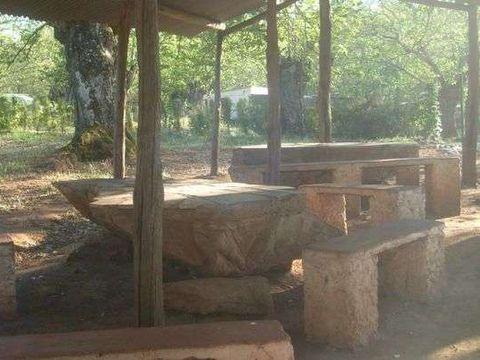 Camping Madronal - Camping Huelva - Image N°7