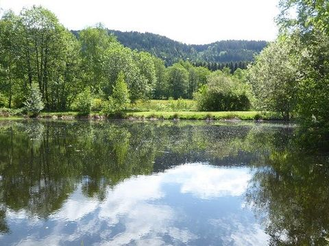 Camping Les Trexons - Camping Vosges - Image N°7