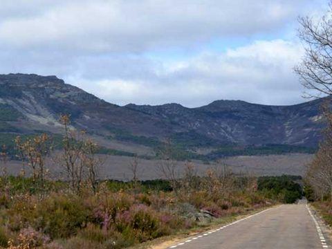 Camping Al-Bereka - Camping Murcia - Image N°10