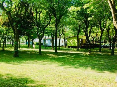 Camping Altanea - Camping Venise - Image N°14