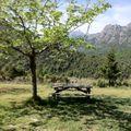camping aire naturelle la ferme de Peridundellu